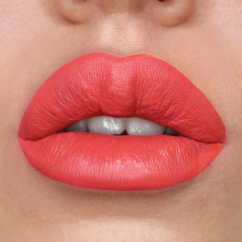 Matte Liquid Lipstick - Socialite Image